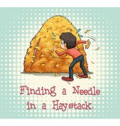 Haystack vector