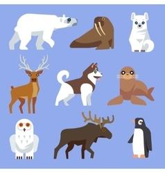 North arctic or antarctic animals and birds vector