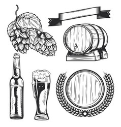 set beers elements vector image