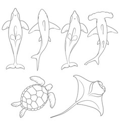 set of images with marine animals vector image