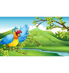 A big and colorful parrot near the river vector image vector image