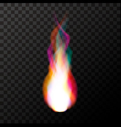 bright colorful magic fire flame on transparent vector image