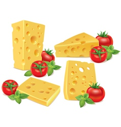 Cheese cherry tomatoes basil vector