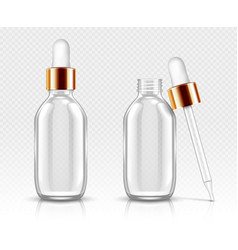 glass bottles with dropper for serum or oil mockup vector image