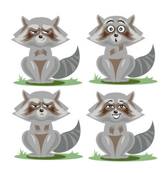 Raccoon collection with different emotions vector