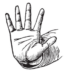 This picture represents the hands violent vector