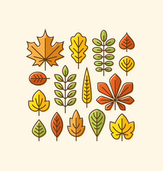 colorful autumn leaves icons set vector image