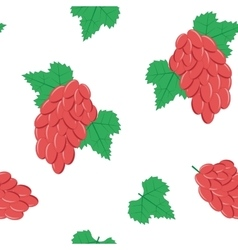Seamless Pattern with Bunches of Red Grapes on vector image