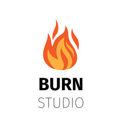 burn studio fire flame logo vector image