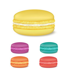 Colourful french macaroons vector