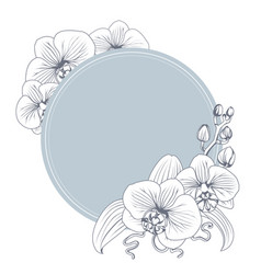 Orchid phalaenopsis flower branch bouquet wreath vector