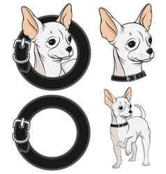 set color with a chihuahua vector image