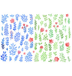 set of watercolor florals vector image