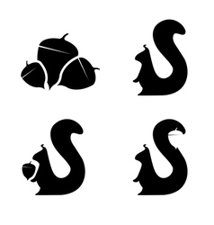 set squirrels and nuts design template vector image