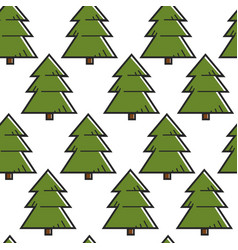 spruce or fir tree seamless pattern forest vector image