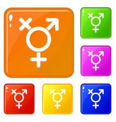 Transgender sign icons set color vector