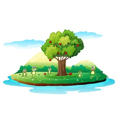 An island with frogs vector image