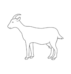silhouette of goat vector image