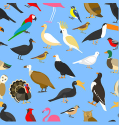 big set of tropical domestic and other birds vector image