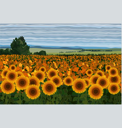 Bright field of sunflowers with bushes trees and vector