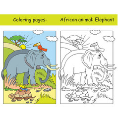 coloring and color elephant vector image