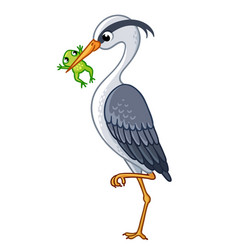 Heron in a beak holds a frog vector