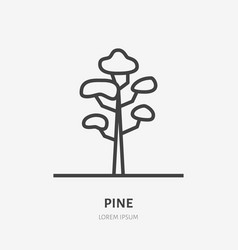 pine tree flat line icon thin sign of vector image