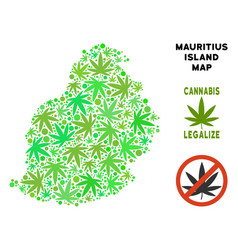 Royalty free cannabis leaves collage mauritius vector