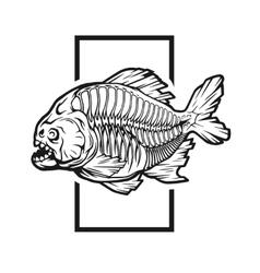 Skeleton piranhas vector image