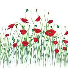poppy back vector image vector image