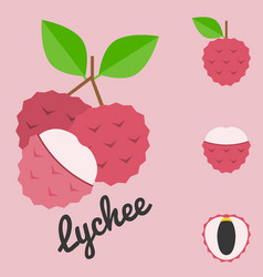 lychee vector image