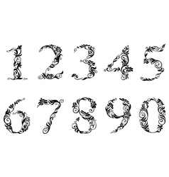 Digits and numbers set with floral details vector image