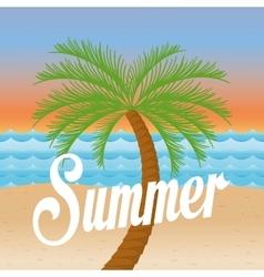 palms tree beach vector image vector image