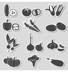 set of black various vegetables stickers eps10 vector image