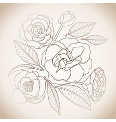 Graphic camellia set vector image