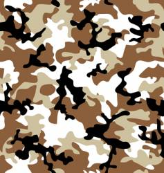 camouflage desert vector image