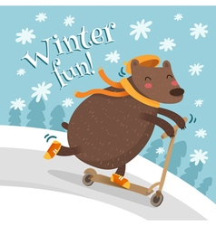 Greeting card design with bear on scooter vector image