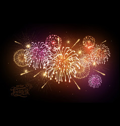 holiday firework independence day vector image