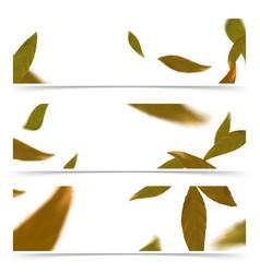 orange falling autumn leaves web banner flyer vector image