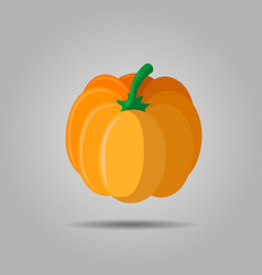 orange pumpkin autumn halloween pumpkin vector image