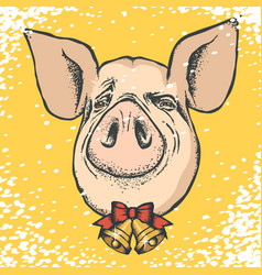 Pig christmas and new year concept vector