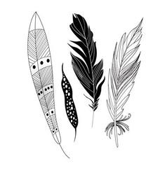 Graphic black feathers closeup on a white vector image vector image