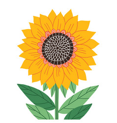 beautiful abstract sunflower isolated vector image