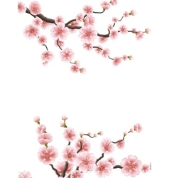 Cherry or sakura floral frame EPS 10 vector image