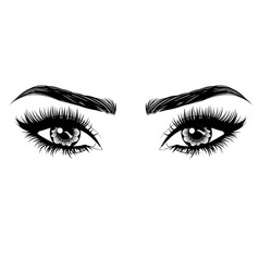 Eyes with long eyelashes and brows vector