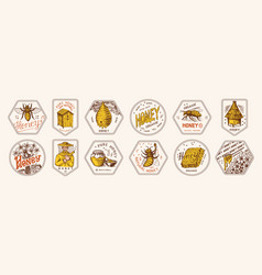 honey and bees stickers set beekeeper man and vector image