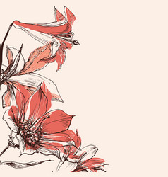 lily flowers decorative background for greeting vector image