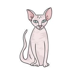 peterbald icon in cartoon style isolated on white vector image