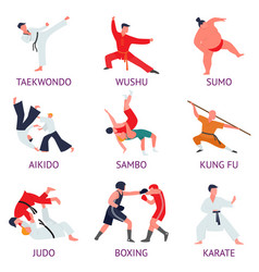set of fighters engaged in martial arts fighters vector image