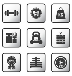 set of weight icons vector image